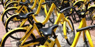 ofo bike sharing